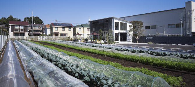 2018年度の野菜作り体験会員(貸農園会員)募集開始しました。