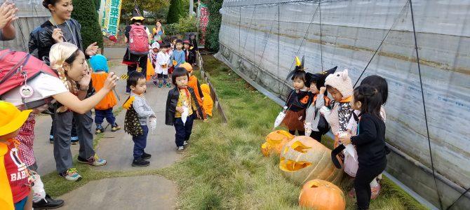 保育園園児のハロウィンパレード