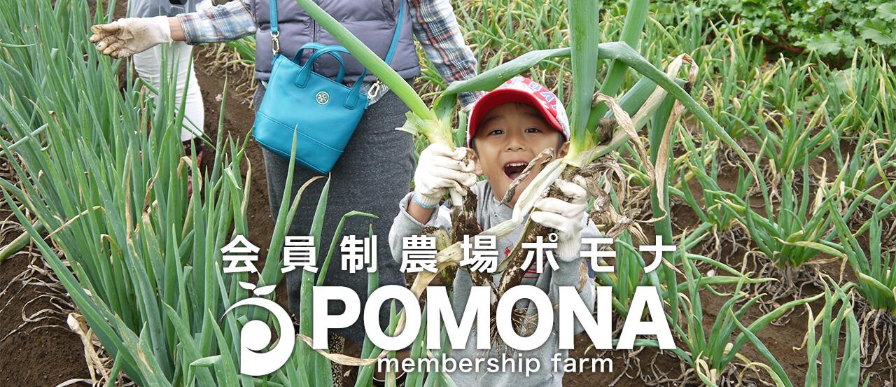 東京で始める貸し農園 会員制農場ポモナ POMONA Membershipfarm