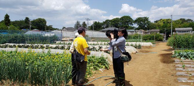 TOKYO MXニュースの取材がありました。